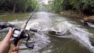 AMAZING Creek Fishing for Smallmouth Bass!!!